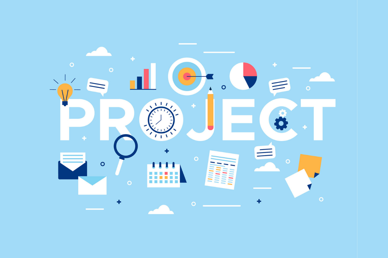 Project Manager Professional PMP