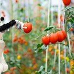 robots colaborativos agricultura